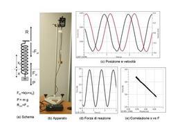 Schema, apparato e tracciati nello studio del moto armonico