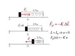 Le forze elastiche e legge di Hooke