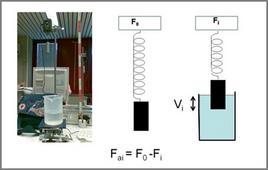 Apparato sperimentale per lo studio della spinta di Archimede