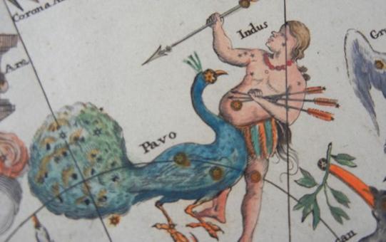Costellazioni australi dall'Atlas Coelestis di Johann Doppelmayr (Norimberga; 1742). Fonte: Atlas Coelestis (1742)