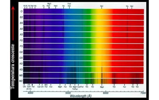 Anche altre caratteristiche degli spettri delle stelle (righe, bande) dipendono fortemente dalla temperatura. Fonte: M. Capaccioli.