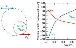 Curve di velocità radiale delle componenti una binaria spettroscopica.