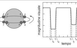 Geometria e curva di luce di una binaria ad eclisse totale. Fonte: M. Capaccioli.
