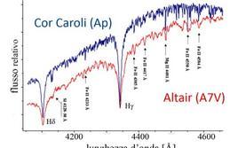 Il confronto tra due stelle di tipo A con diversa velocità angolare mostra l'effetto dell'allargamento Doppler. Fonte: adattata da sito web Osservatorio Astronomico Schiaparelli, Varese.