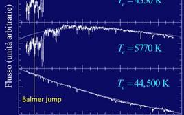 Confronto fra spettri di stelle a diversa temperatura efficace. Notare l'assenza del Balmer jump (nello spettro della stella calda). Fonte: M.Capaccioli