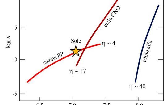 Valore cosmico del numero di atomi delle diverse specie per 106 Si. Fonte: M. Capaccioli.