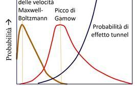 Schizzo che mostra l'andamento antagonista della probabilità cinetica e di quella legata all'effetto tunnel man mano che l'energia del sistema cresce. Fonte M. Capaccioli.