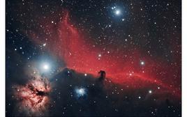 """Dettaglio del Complesso di Orione: la nebulosa """"Testa di Cavallo"""". Fonte: NASA."""