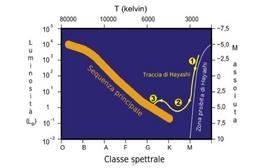 La traccia di Hayashi nel diagramma H-R. Fonte: M. Capaccioli.