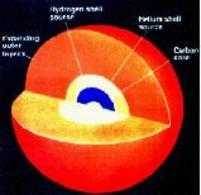 Struttura interna di una stella massica con un nucleo di carbonio. Fonte: NASA.