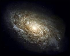 Flocculent spiral NGC 4414. Credit: NASA (HST).