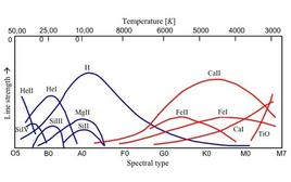 Stellar spectra classification showing the relative strength of the elements characterizing the spectrum.