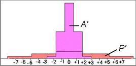 Rappresentazione grafica delle distribuzioni A e P I normalizzazione.