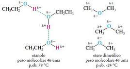 Interazioni molecolari tra molecole di etanolo e tra molecole di etere dimetilico. Fonte: Seyhan Eğe, La Chimica Organica Essenziale, Idelson-Gnocchi, 2008