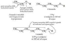 Solubilità in acqua dell'etanolo, 1-butanolo ed 1-esanolo.Fonte: Seyhan Eğe, La Chimica Organica Essenziale, Idelson-Gnocchi, 2008
