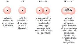 Orbitale molecolare di legame nella molecola di idrogeno. Fonte: Seyhan Eğe, La Chimica Organica Essenziale, Idelson-Gnocchi, 2008