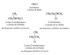 Esempi di alogenuri alchilici