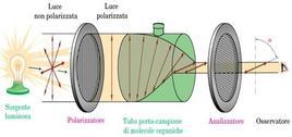 Schema di un polarimetro. Fonte: Seyhan Eğe, La Chimica Organica Essenziale, Idelson-Gnocchi, 2008