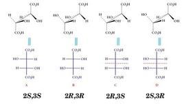 I 4 stereoisomeri dell'acido tartarico