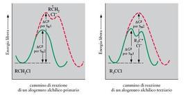 Energie libere di attivazione per meccanismi SN2 e SN1 di alogenuri alchilici Ii e IIIi
