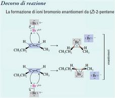 Formazione di ioni bromonio enantiomeri da (Z)-2-pentene. Fonte: Seyhan Eğe, La Chimica Organica Essenziale, Idelson-Gnocchi, 2008