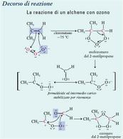 La La reazione di un alchene con ozono. Fonte: Seyhan Eğe, Chimica Organica Essenziale, Idelson-Gnocchi, 2008