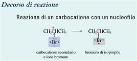Reazione di un carbocatione con un nucleofilo. Fonte: Seyhan Eğe, La Chimica Organica Essenziale, Idelson-Gnocchi, 2008