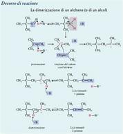 La dimerizzazione di un alchene. Fonte: Seyhan Eğe, La Chimica Organica Essenziale, Idelson-Gnocchi, 2008
