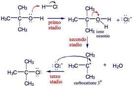 Decorso di reazione. Fonte: Seyhan Eğe, La Chimica Organica Essenziale, Idelson-Gnocchi, 2008