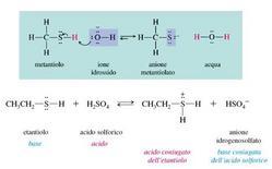 Confronto della acidità e basicità di alcoli e tioli. Fonte: Seyhan Eğe, La Chimica Organica Essenziale, Idelson-Gnocchi, 2008