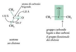Differente descrizione della molecola di acetone. Fonte: Seyhan Eğe, La Chimica Organica Essenziale, Idelson-Gnocchi, 2008