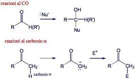 Reattività del gruppo carbonilico. Fonte: Seyhan Eğe, La Chimica Organica Essenziale, Idelson-Gnocchi, 2008