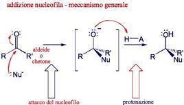 Meccanismo generale dell'addizione nucleofila. Fonte: Seyhan Eğe, La Chimica Organica Essenziale, Idelson-Gnocchi, 2008