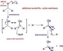 Meccanismo generale dell'addizione nucleofila acido-catalizzata. Fonte: Seyhan Eğe, La Chimica Organica Essenziale, Idelson-Gnocchi, 2008