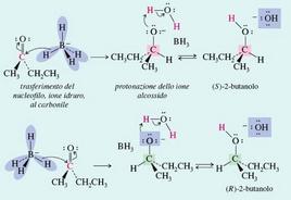 Decorso della reazione: dal 2-butanone, ottengo il (±)-2-butanolo. Fonte: Seyhan Eğe, La Chimica Organica Essenziale, Idelson-Gnocchi, 2008