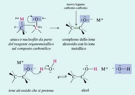 L'addizione di un reagente organometallico ad un composto carbonilico. Fonte: Seyhan Eğe, La Chimica Organica Essenziale, Idelson-Gnocchi, 2008