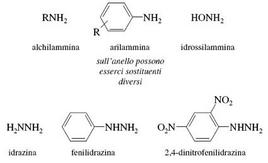 Nucleofili correlati con l'ammoniaca. Fonte: Seyhan Eğe, La Chimica Organica Essenziale, Idelson-Gnocchi, 2008