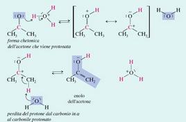 Enolizzazione dell'acetone (pKa 19) promossa da acidi. Fonte: Seyhan Eğe, La Chimica Organica Essenziale, Idelson-Gnocchi, 2008
