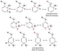 Forme limite di risonanza degli intermedi derivanti dall'attacco del bromo al fenolo. Fonte: Seyhan Eğe, La Chimica Organica Essenziale, Idelson-Gnocchi, 2008