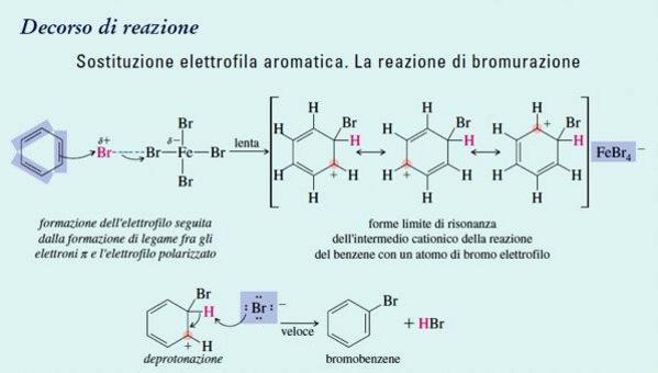 Sostituzione elettrofila aromatica. La reazione di bromurazione. Fonte: Seyhan Eğe, La Chimica Organica Essenziale, Idelson-Gnocchi, 2008