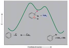 Diagramma di energia per la bromurazione del benzene. Fonte: Seyhan Eğe, La Chimica Organica Essenziale, Idelson-Gnocchi, 2008