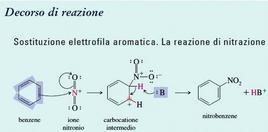 Sostituzione elettrofila aromatica. La reazione di nitrazione. Fonte: Seyhan Eğe, La Chimica Organica Essenziale, Idelson-Gnocchi, 2008