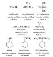 Esempi di ammine primarie, secondari e terziarie. Fonte: Seyhan Eğe, La Chimica Organica Essenziale, Idelson-Gnocchi, 2008