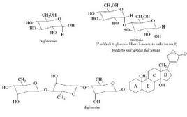 Esempi di carboidrati presenti in natura. Fonte: Seyhan Eğe, La Chimica Organica Essenziale, Idelson-Gnocchi, 2008