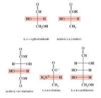 """Monosaccaridi appartenenti alla """"serie sterica L."""" Fonte: Seyhan Eğe, La Chimica Organica Essenziale, Idelson-Gnocchi, 2008"""