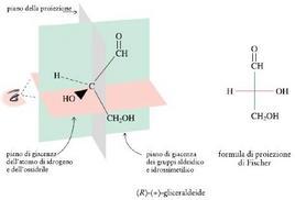 Formula di proiezione della (R)-(+)-gliceraldeide. Fonte: Seyhan Eğe, La Chimica Organica Essenziale, Idelson-Gnocchi, 2008