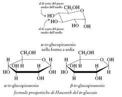 Formula prospettica di Haworth del D-glucosio. Fonte: Seyhan Eğe, La Chimica Organica Essenziale, Idelson-Gnocchi, 2008