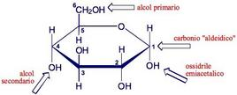Gruppi funzionali presenti nel α-D-glucosio. Fonte: Seyhan Eğe, La Chimica Organica Essenziale, Idelson-Gnocchi, 2008