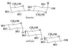 Esempi di disaccaride e polisaccaride. Fonte: Seyhan Eğe, La Chimica Organica Essenziale, Idelson-Gnocchi, 2008