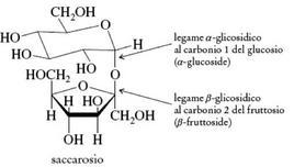 Il saccarosio. Fonte: Seyhan Eğe, La Chimica Organica Essenziale, Idelson-Gnocchi, 2008